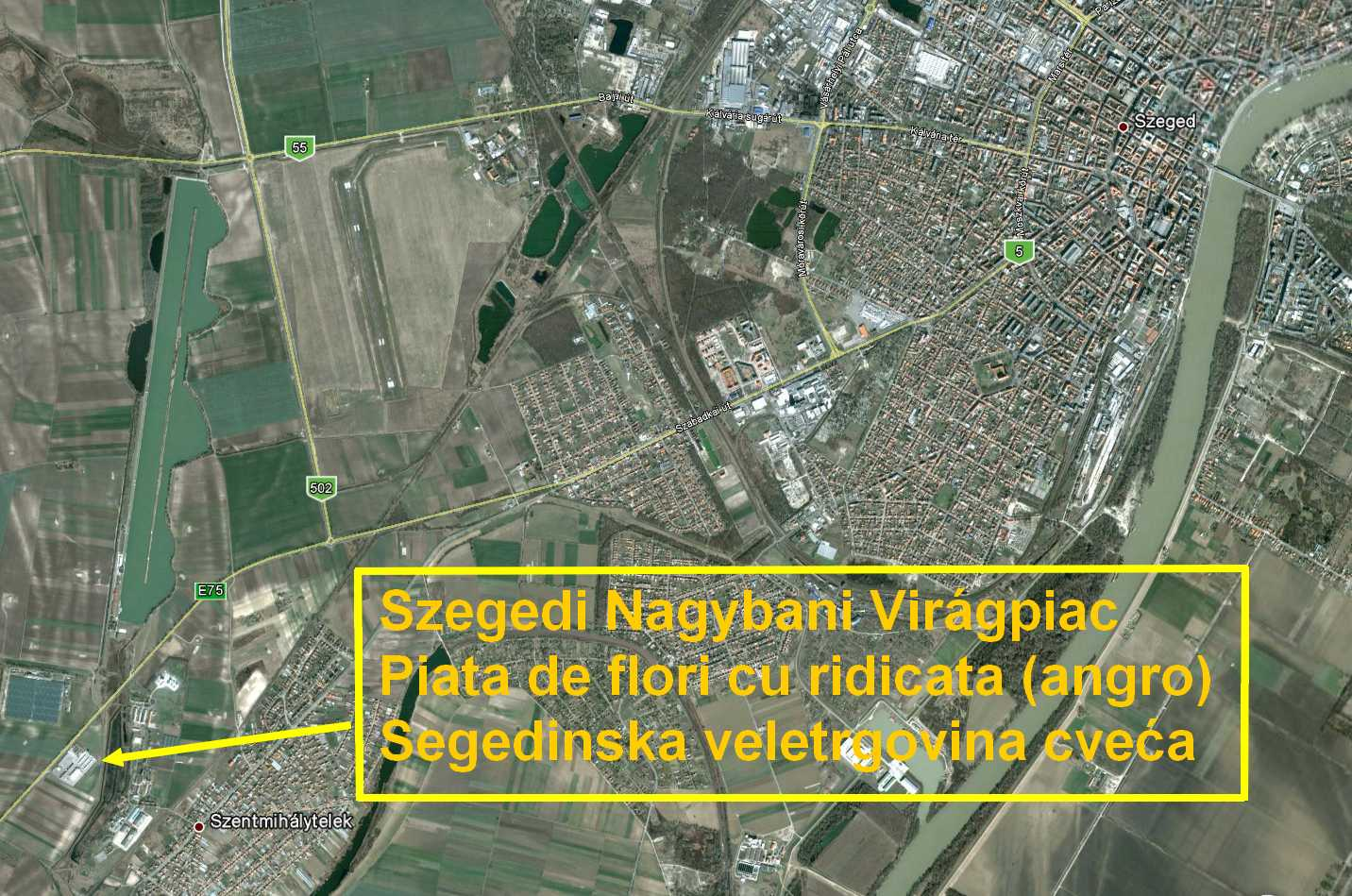 Szegedi Nagybani Viragpiac Reszletes Terkep